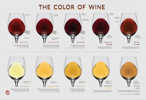 provas de vinho